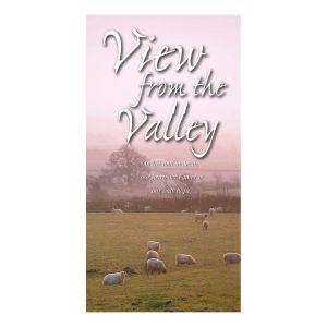 VIew From The Valley