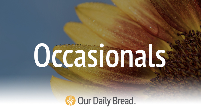 Our Daily Bread Occasional